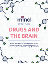 mind matters drugs and brain cover